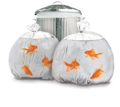 PET Goldfish Bin Bags, 12 Stück